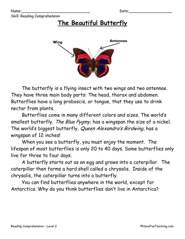 Butterflies - Reading Comprehension Worksheet | Have Fun Teaching