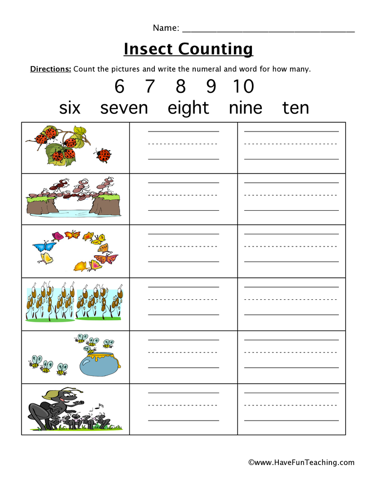 Vocabulary Matching Worksheet Insects