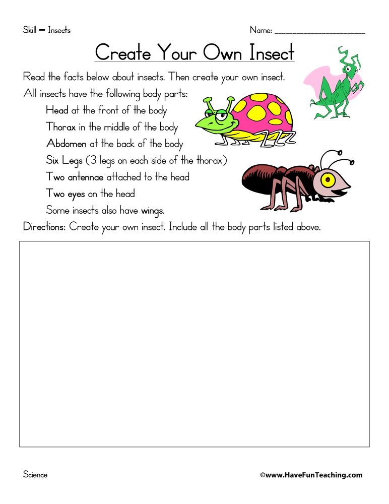 Worksheets Create Your Own Worksheets insect body parts worksheet preschool intrepidpath create your own worksheets have fun teaching