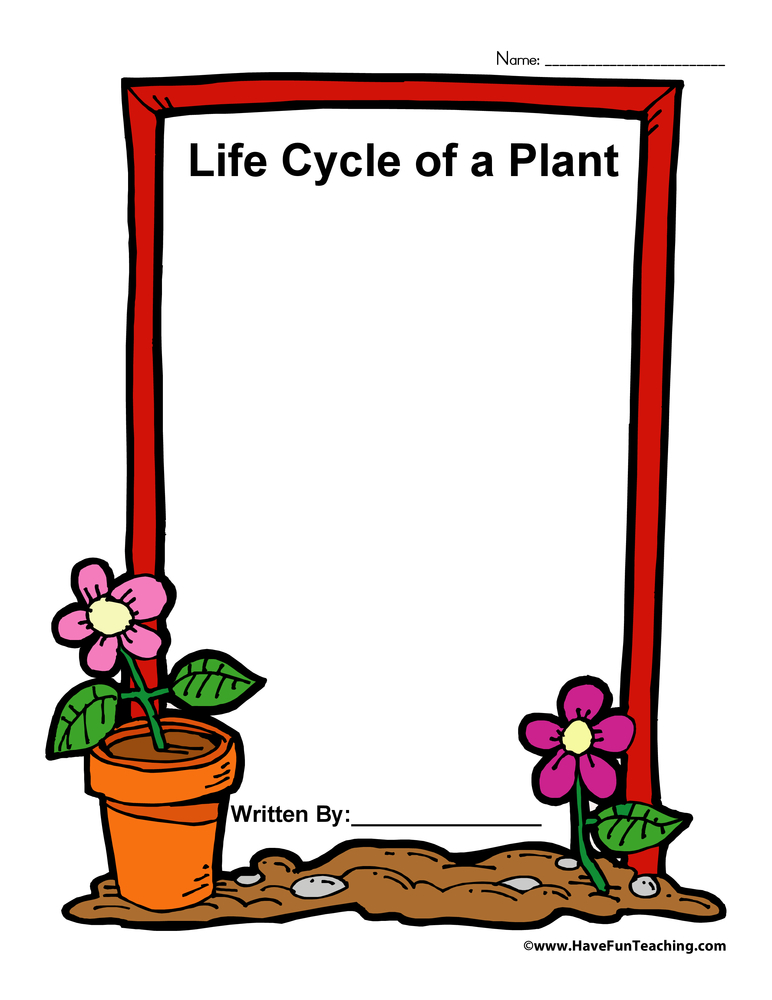Life Cycle of a Plant Book