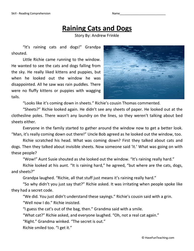 Raining Cats and Dogs - Reading Comprehension Worksheet