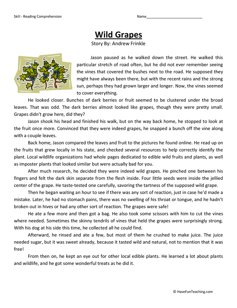 Fifth Grade Reading Comprehension Activities | Page 5 of 5 | Have ...