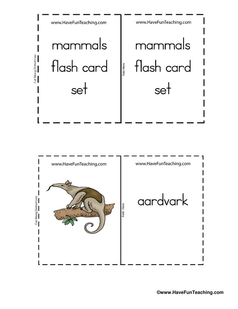 cartoon-mammal-flash-cards