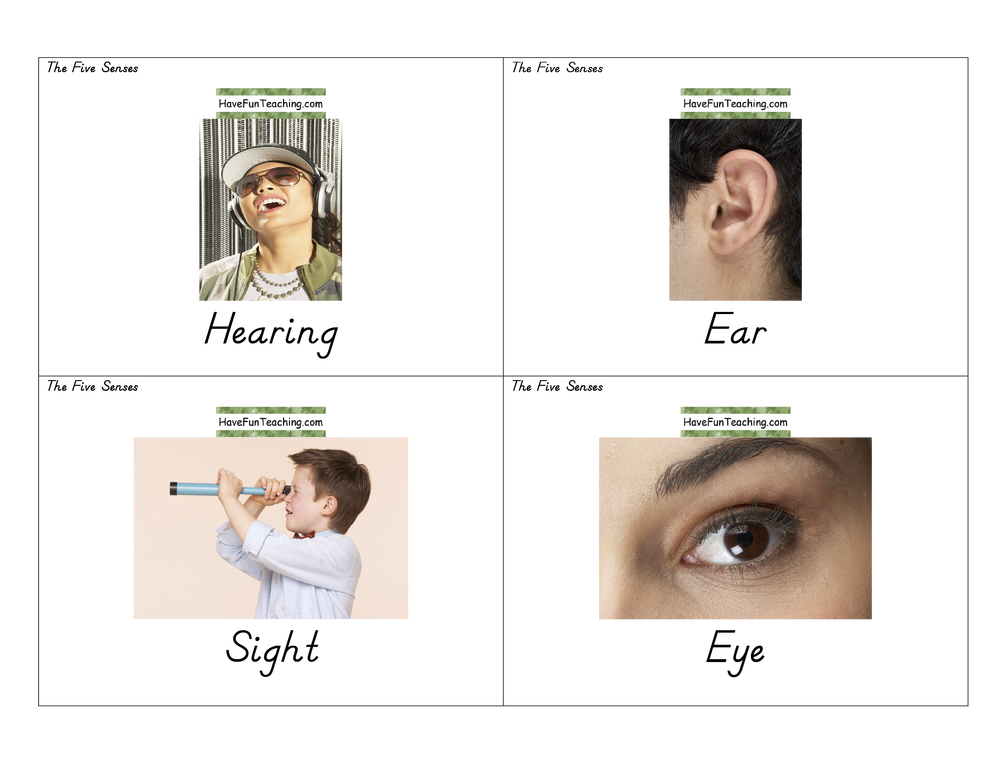 health-flash-cards-five-senses