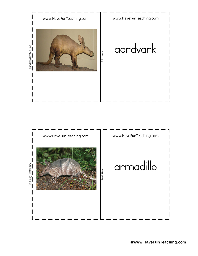 Mammals Real Life Flash Cards