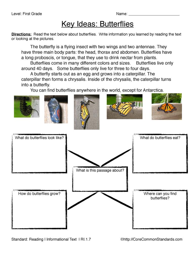 Ri 1 7 Common Core Worksheet Have Fun Teaching
