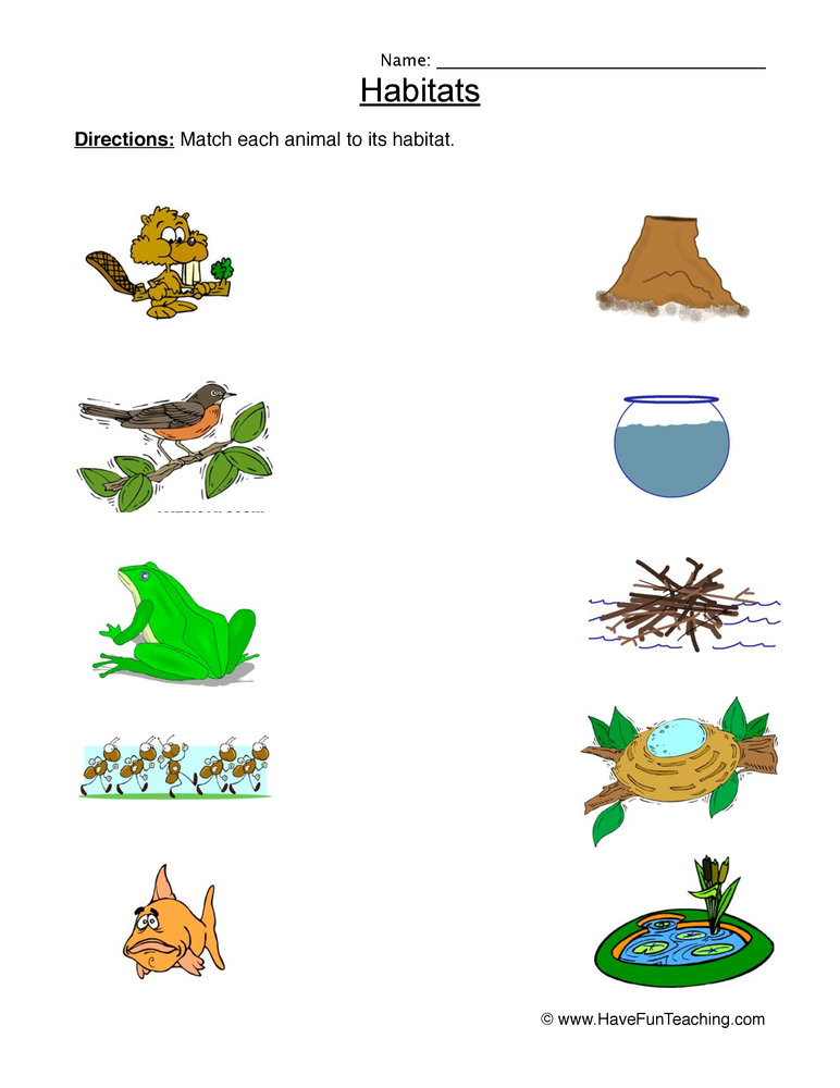 Animal Habitats Matching Worksheet