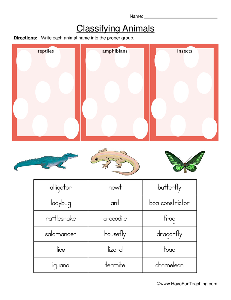 Classifying Animals Worksheets