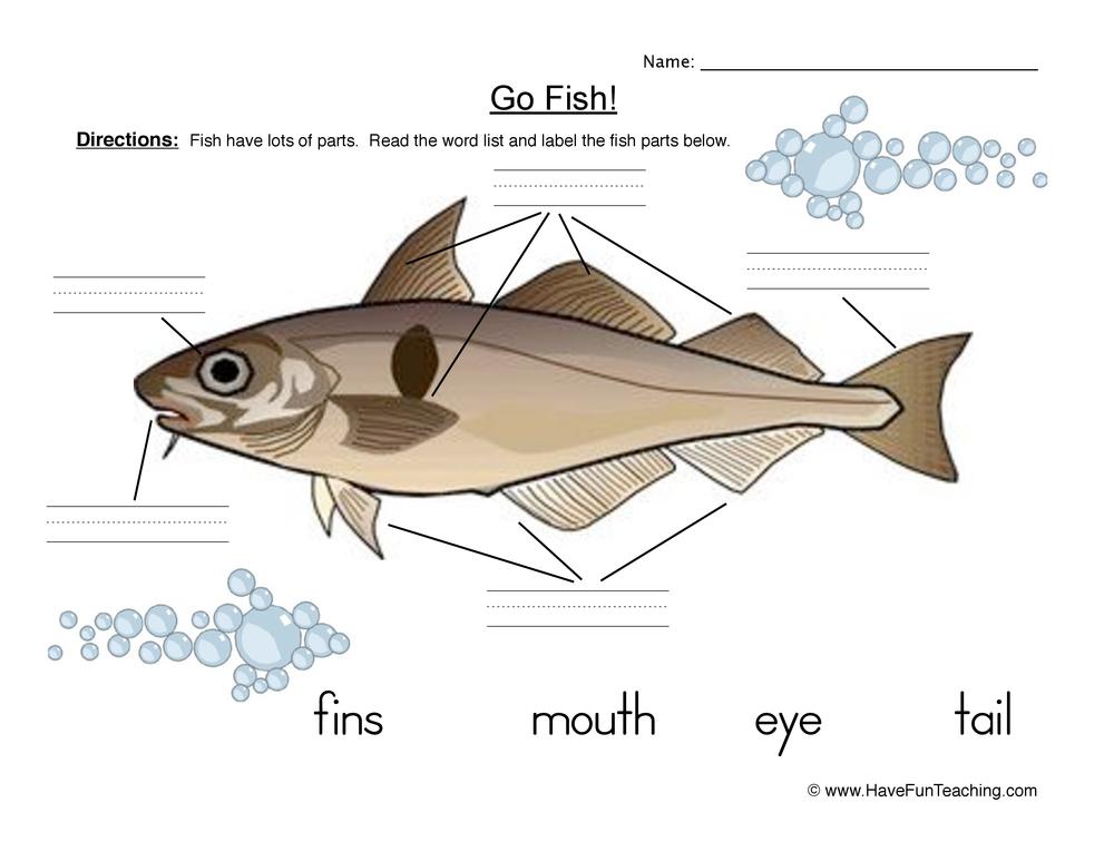 Fish Parts Worksheet