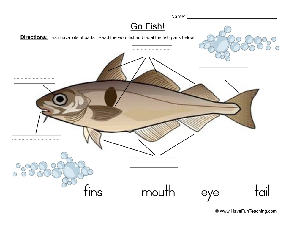 Fish Parts Worksheet – Fish Worksheet