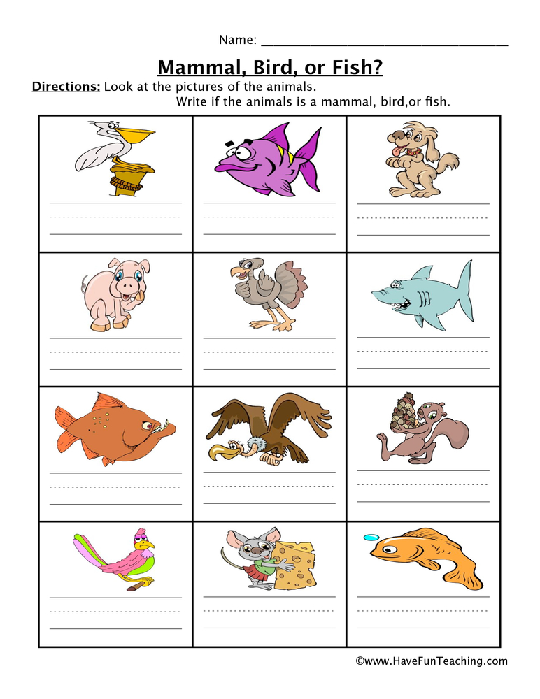 Mammal Fish Bird Worksheet