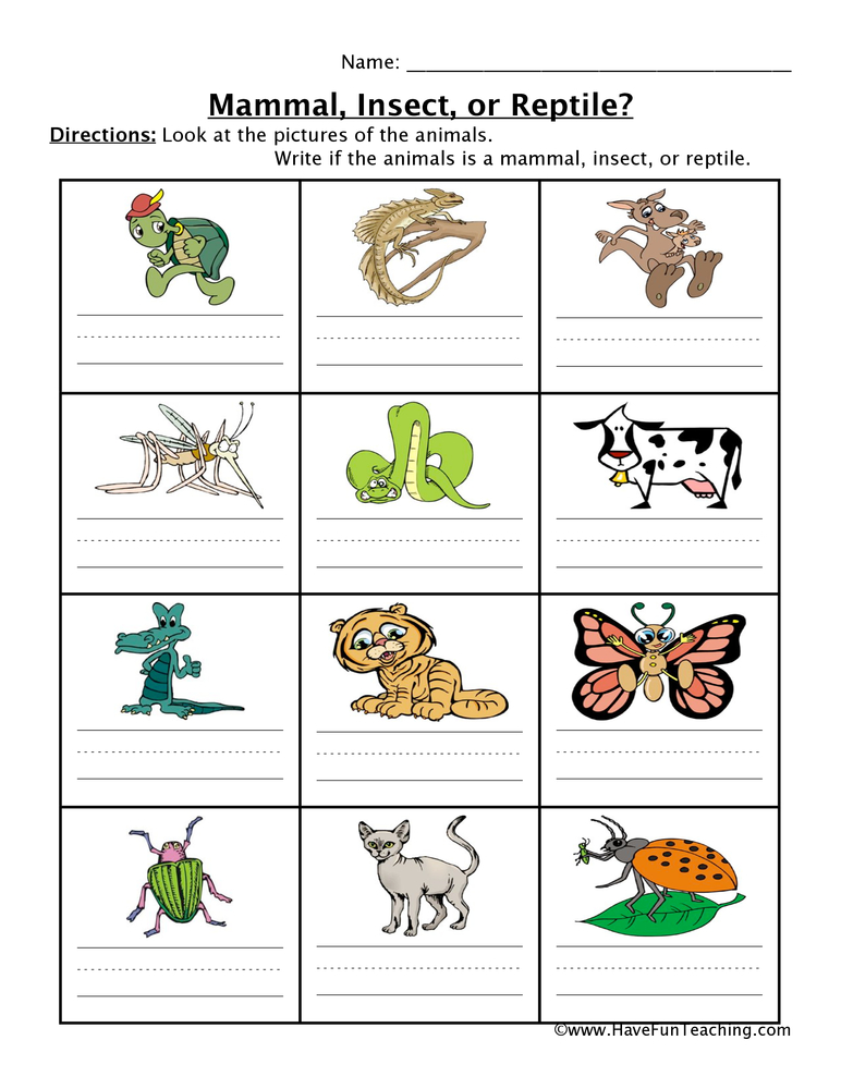 Animal Worksheets - Page 2 of 3 - Have Fun Teaching