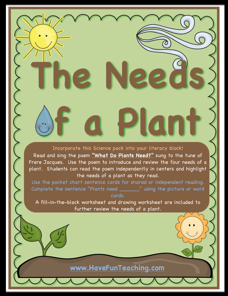 seeds and plants activity 2