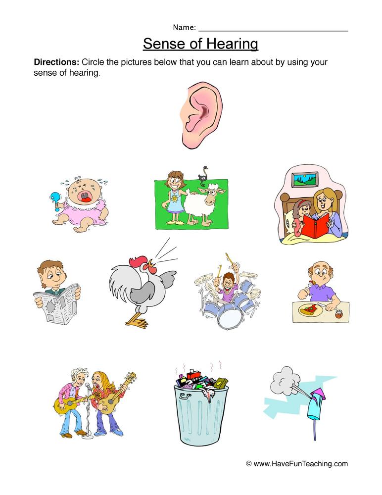 senses worksheet 2