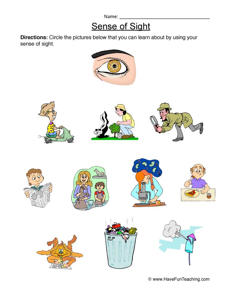 5 Senses - Planning Playtime |Worksheets About Senses