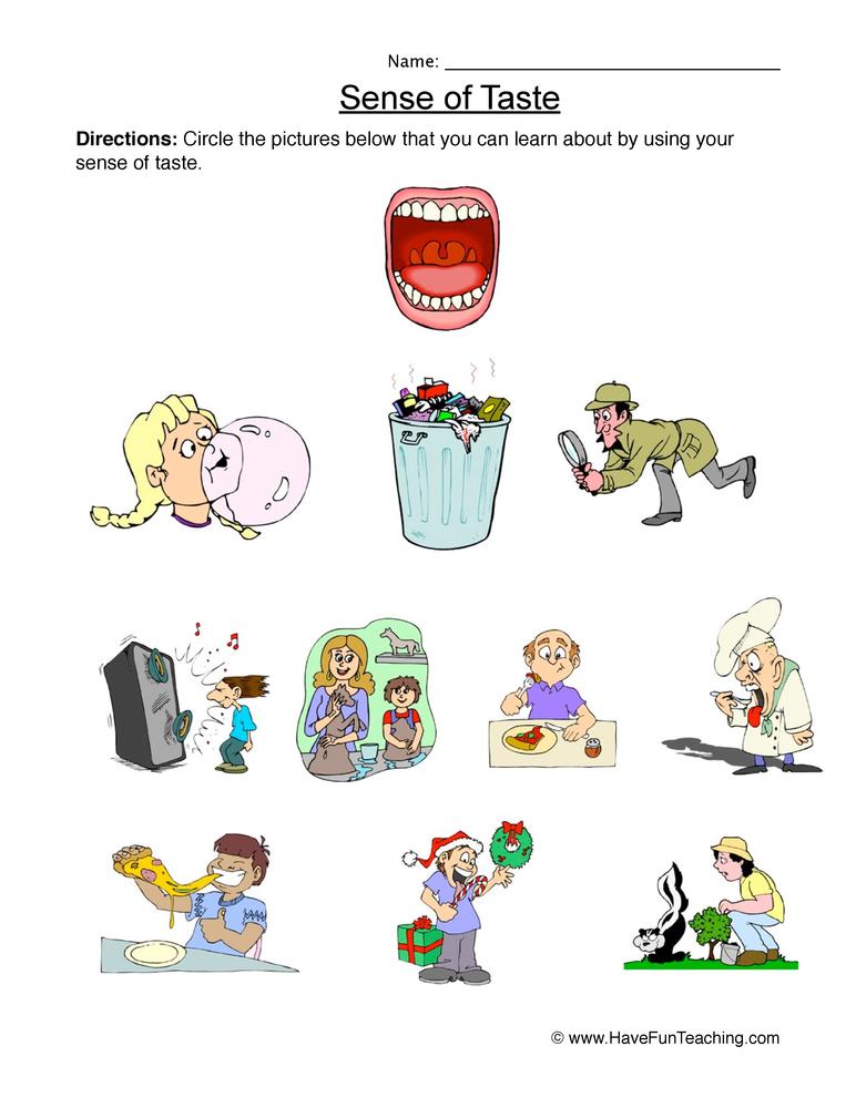 senses worksheet 4