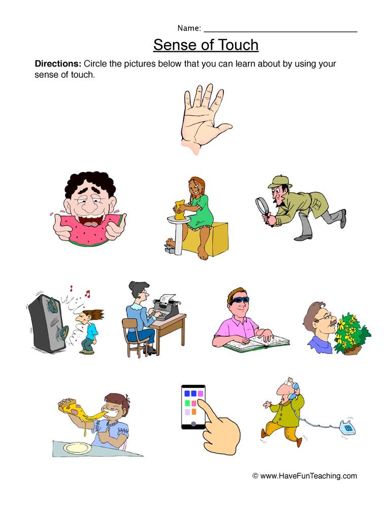 senses worksheet 5
