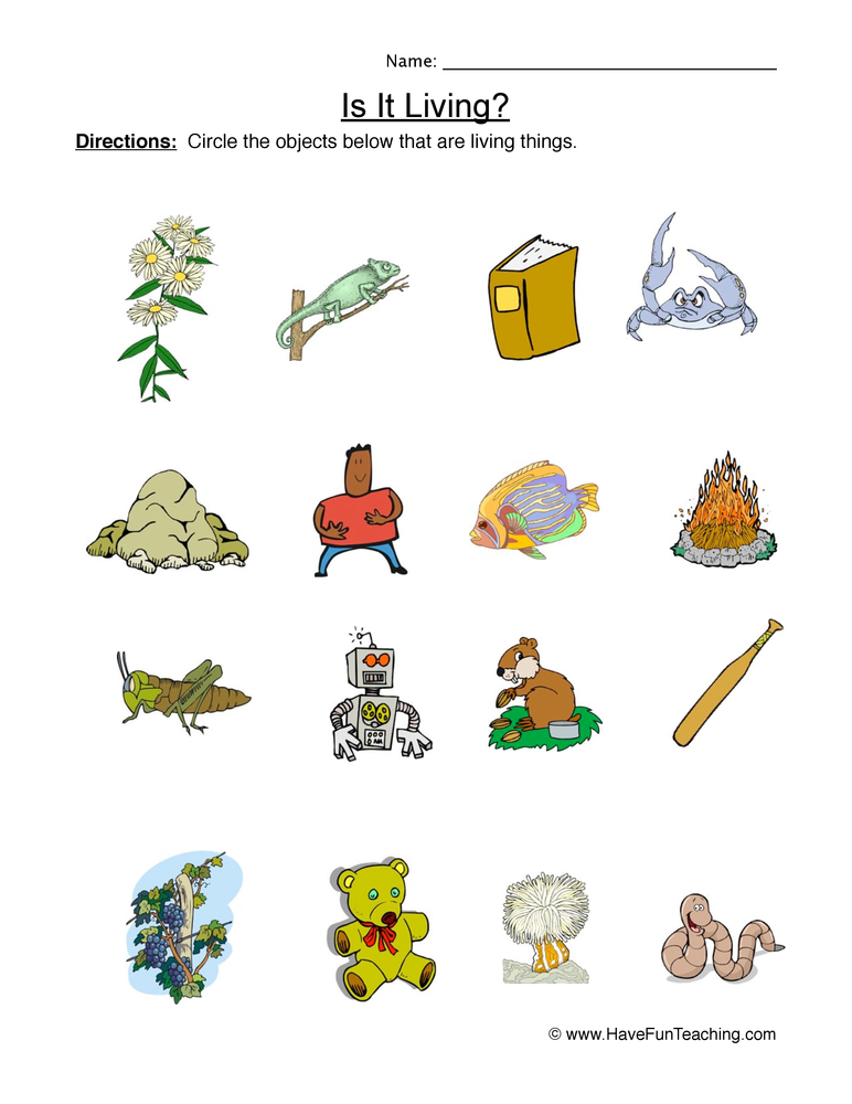 living things worksheet 1