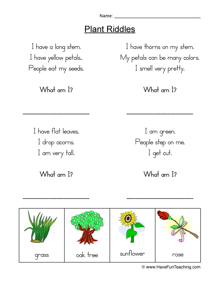 plant riddles worksheet 1