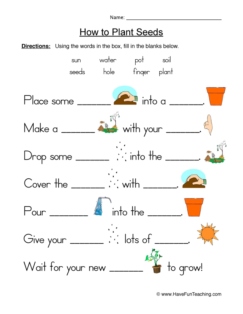 seeds plants worksheet 1