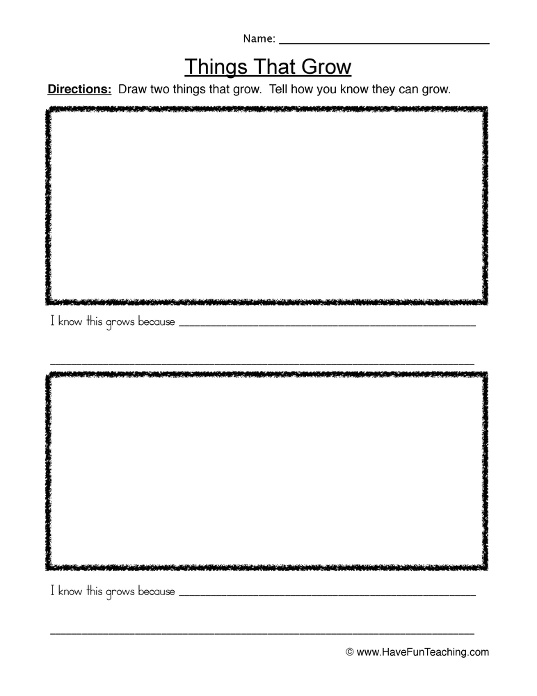 things that grow worksheet 2