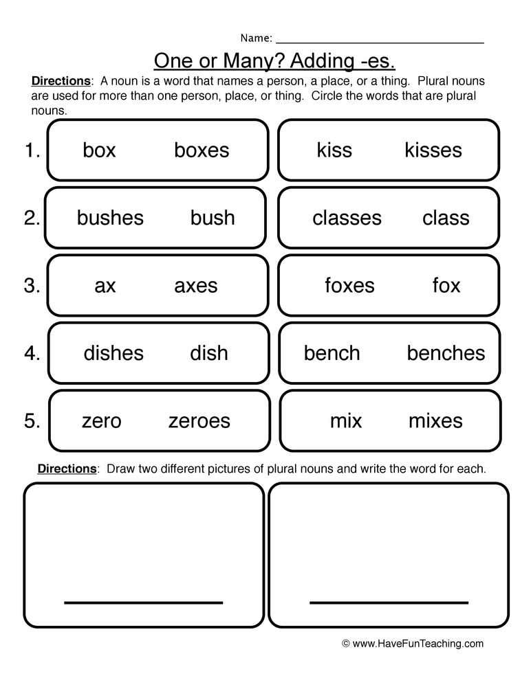 Plural Noun Worksheet 2 Adding ES – Plural Nouns Worksheets