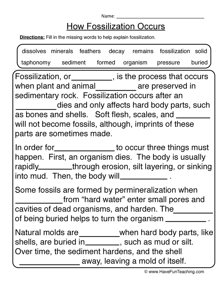 Printables 6th Grade Earth Science Worksheets fossils worksheet 1 1