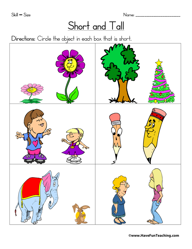 Short And Tall Worksheet Have Fun