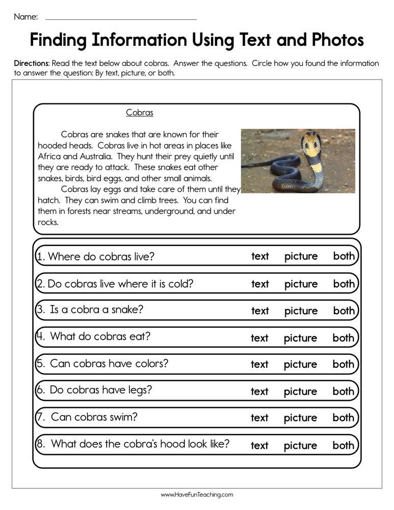 Finding Information Using Text and Photos Worksheet