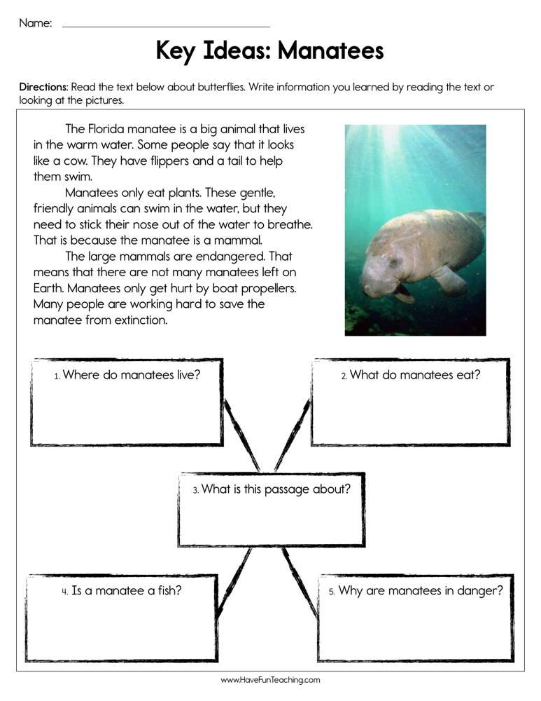 Key Ideas Manatees Worksheet