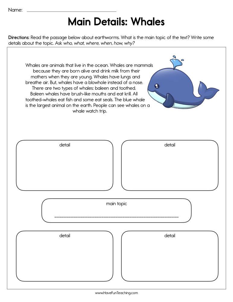 Main Details Whales Worksheet