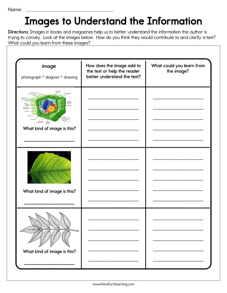 Images to Understand the Information Worksheet