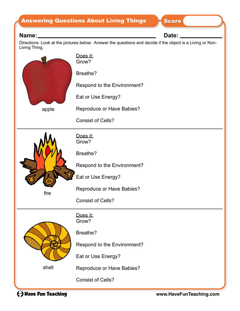 Answering Questions About Living Things Worksheet Have