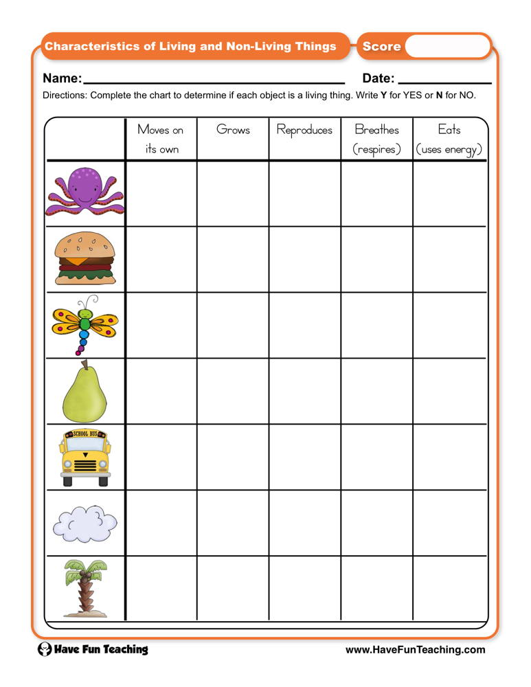 Living and Non-Living Things Worksheets | Have Fun Teaching